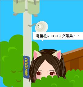 _2011_02_15_14_56_55_2